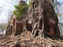 Laos-Cambogia 2020